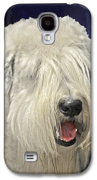 Working Breed Galaxy S4 Cases - Bearded Collie - the Bouncing Beardie Galaxy S4 Case by Christine Till