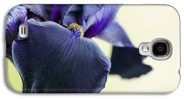 Stigma Galaxy S4 Cases - Bearded Iris Interpol Galaxy S4 Case by Tim Gainey