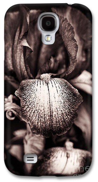 Stigma Galaxy S4 Cases - Bearded Iris Kent Pride Galaxy S4 Case by Tim Gainey