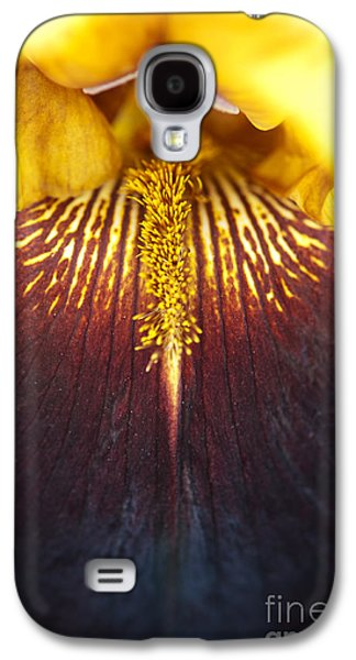 Filament Galaxy S4 Cases - Bearded Iris Supreme Sultan Galaxy S4 Case by Tim Gainey