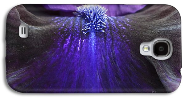 Filament Galaxy S4 Cases - Bearded Iris Whats My Line Galaxy S4 Case by Tim Gainey