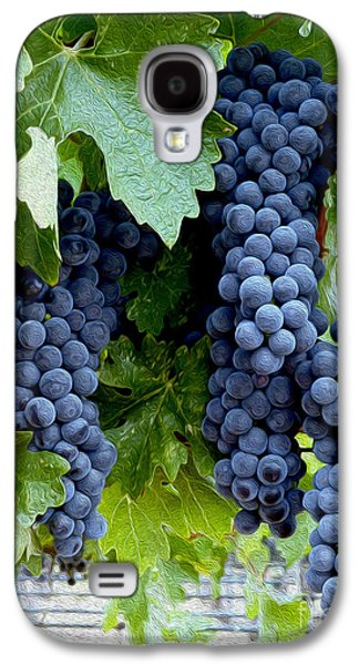 Wine Barrel Photographs Galaxy S4 Cases - Beautiful Fruit Galaxy S4 Case by Jon Neidert