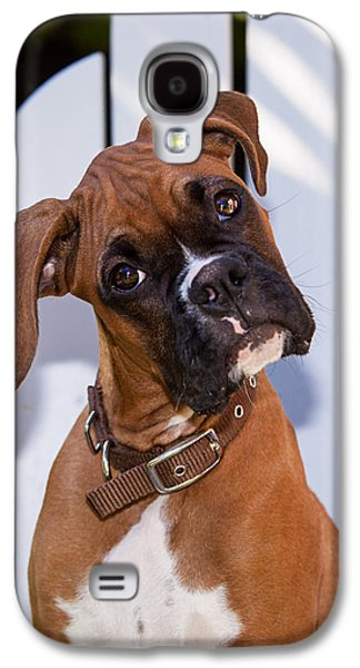 Boxer Galaxy S4 Cases - Beau the Boxer Galaxy S4 Case by Karen Zucal Varnas