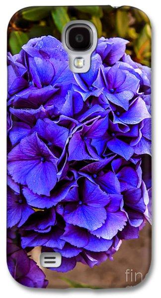 Botanical Galaxy S4 Cases - Beautiful Blue Hydrangea Galaxy S4 Case by Robert Bales