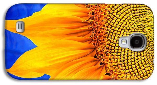 Christina Digital Galaxy S4 Cases - Beautiful Bold Sunflower Galaxy S4 Case by Christina Rollo