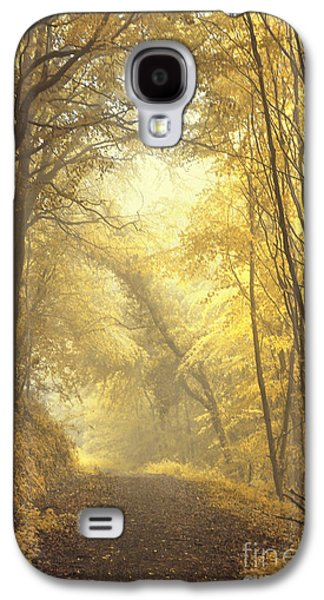 Alley Galaxy S4 Cases - Beautiful Fall Galaxy S4 Case by Evelina Kremsdorf