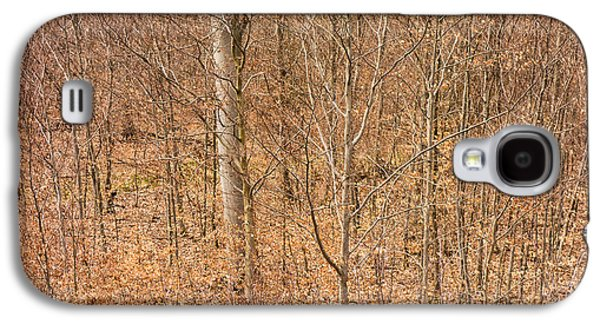 Subtle Colors Galaxy S4 Cases - Beautiful fine structure of trees brown and orange Galaxy S4 Case by Matthias Hauser