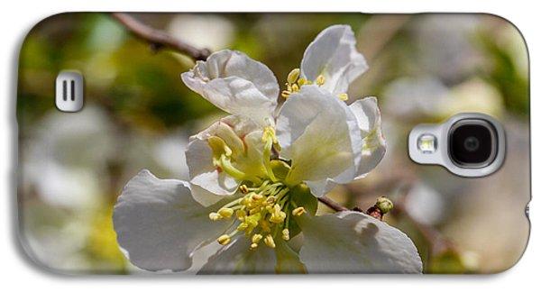Cheekwood Galaxy S4 Cases - Beautiful Flowers Galaxy S4 Case by Robert Hebert