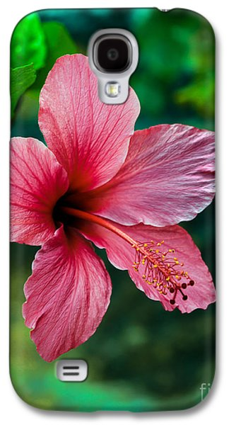 Haybale Galaxy S4 Cases - Beautiful Hibiscus Galaxy S4 Case by Robert Bales