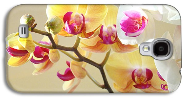 Beautiful Orchids Floral Art Prints Orchid Flowers Galaxy S4 Case by Baslee Troutman
