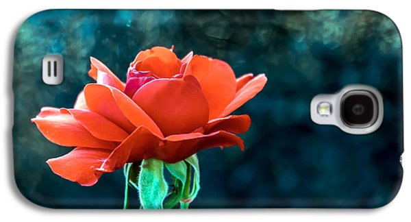 Haybale Galaxy S4 Cases - Beautiful Red Rose Galaxy S4 Case by Robert Bales