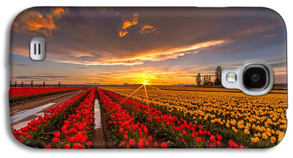 Beautiful Tulip Field Sunset Galaxy S4 Case by Mike Reid