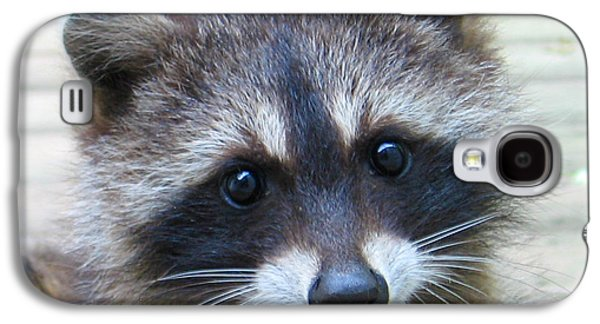 Raccoon Digital Art Galaxy S4 Cases - Becky.s Baby Galaxy S4 Case by Patricia Januszkiewicz