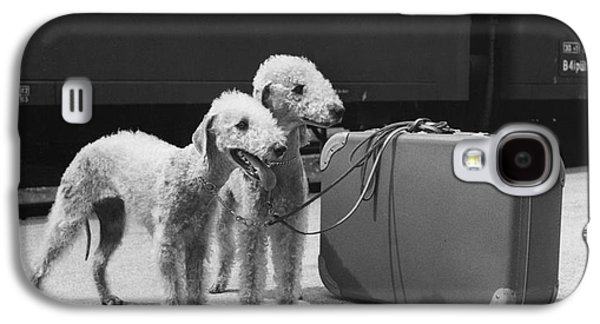 Bedlington Terriers, Austria Galaxy S4 Case by Andy Bernhaut