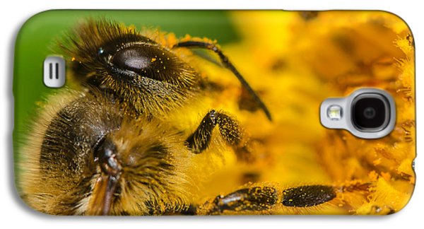 Surreal Landscape Galaxy S4 Cases - Bee at work Galaxy S4 Case by Tin Lung Chao