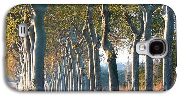 Cathar Country Galaxy S4 Cases - Beloved Plane Trees Galaxy S4 Case by France  Art