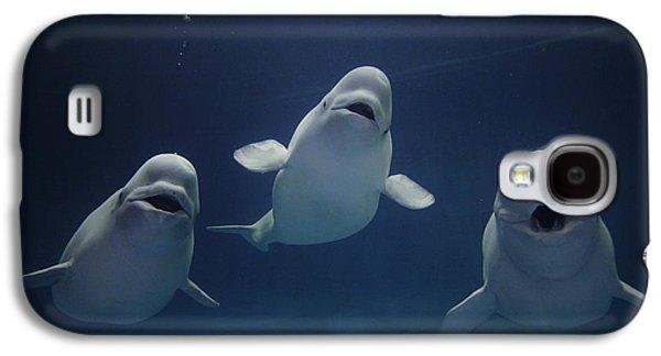 Underwater Photos Galaxy S4 Cases - Beluga Whale Trio Galaxy S4 Case by Hiroya Minakuchi