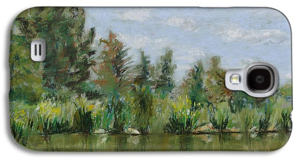 Park Scene Pastels Galaxy S4 Cases - Benson Sculpture Park Galaxy S4 Case by Mary Benke