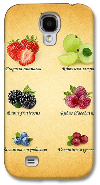 Berries Galaxy S4 Cases - Berry Galaxy S4 Case by Mark Rogan