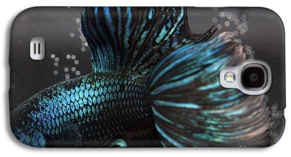 Betta Galaxy S4 Cases - Betta Fish Close Up Galaxy S4 Case by Jennifer Gaida