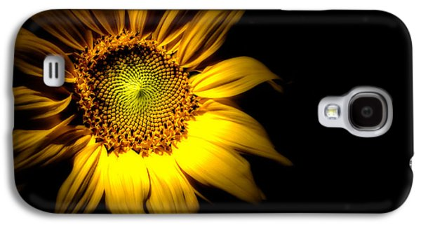 Sunflower Garden Galaxy S4 Cases - Between Here And There Galaxy S4 Case by Bob Orsillo