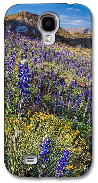 Park Scene Galaxy S4 Cases - Big Bend Flower Meadow Galaxy S4 Case by Inge Johnsson