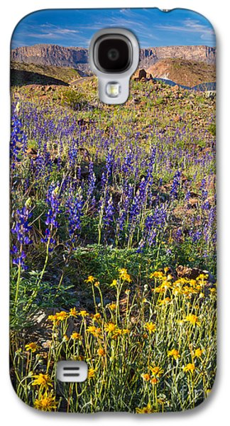 Park Scene Galaxy S4 Cases - Big Bend Flowers Galaxy S4 Case by Inge Johnsson