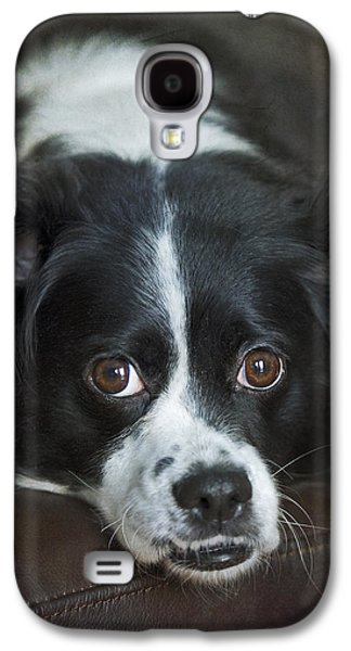Puppies Galaxy S4 Cases - Big Eyed Cuteness.. Galaxy S4 Case by Nina Stavlund