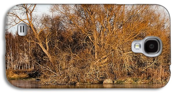 Trees Reflecting In Creek Galaxy S4 Cases - Big tree colored coloured #orange by sun on January 2  2015 besides the creek of Enkoping Galaxy S4 Case by Leif Sohlman
