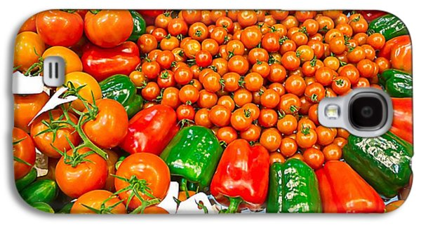 Biology Pyrography Galaxy S4 Cases - Bio Vegetables Galaxy S4 Case by Dragomir Nikolov