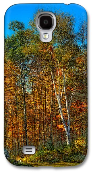 Surreal Landscape Galaxy S4 Cases - Birch among the Maples Galaxy S4 Case by David Patterson