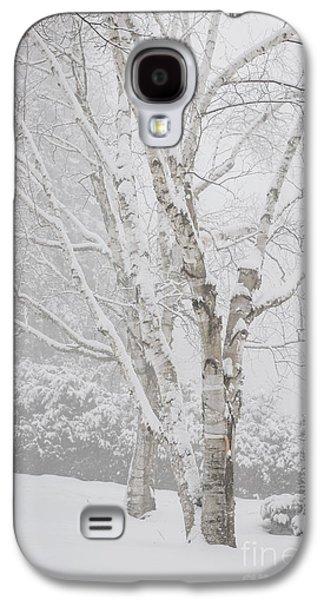 January Galaxy S4 Cases - Birch trees in winter Galaxy S4 Case by Elena Elisseeva