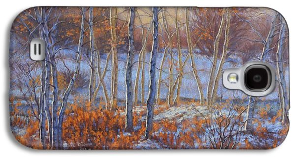 Winter Scene Pastels Galaxy S4 Cases - Birches in First Snow Galaxy S4 Case by Fiona Craig