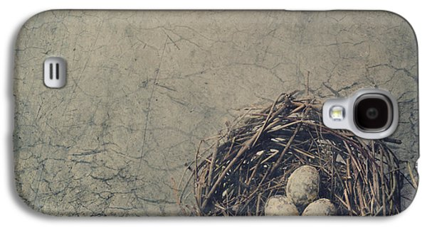 Pyrography Galaxy S4 Cases - Bird Nest Galaxy S4 Case by Jelena Jovanovic