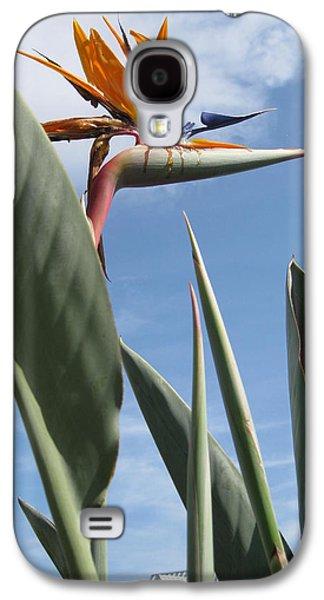 Bird Ceramics Galaxy S4 Cases - Bird of Paradise Galaxy S4 Case by Brenda Burns