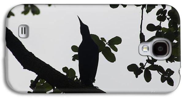 Creative Blackbird Galaxy S4 Cases - Bird - Grackle Twilight Moment - Luther Fine Art Galaxy S4 Case by Luther  Fine Art