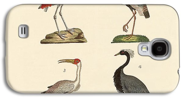 Demoiselles Galaxy S4 Cases - Birds from hot countries Galaxy S4 Case by Splendid Art Prints