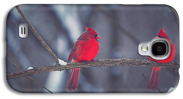 Winter Landscapes Galaxy S4 Cases - Birds Of A Feather Galaxy S4 Case by Carrie Ann Grippo-Pike