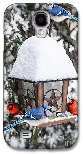 Feeding Galaxy S4 Cases - Birds on bird feeder in winter Galaxy S4 Case by Elena Elisseeva