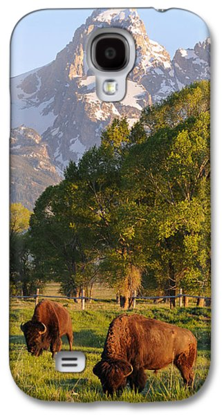Landscape With Mountains Galaxy S4 Cases - Bison and Grand Teton Galaxy S4 Case by Aaron Spong