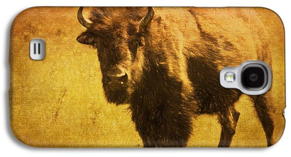 Bison Digital Galaxy S4 Cases - Bison Bull On The Range Galaxy S4 Case by Anna Surface