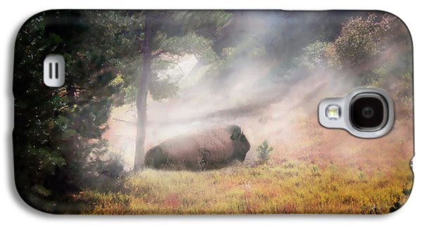 Bison Digital Art Galaxy S4 Cases - Bison Dust Bath Galaxy S4 Case by Terril Heilman