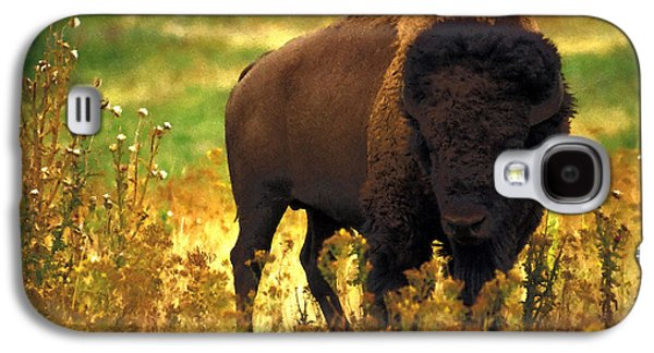 Bison Mixed Media Galaxy S4 Cases - Bison Galaxy S4 Case by EricaMaxine  Price