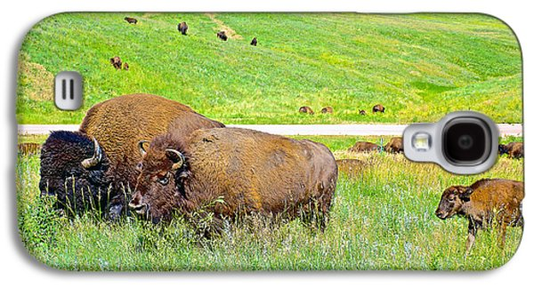 Bison Digital Art Galaxy S4 Cases - Bison Family near Wildlife Loop Road in Custer State Park-South Dakota- Galaxy S4 Case by Ruth Hager