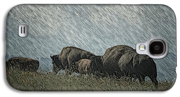 Bison Digital Galaxy S4 Cases - Bison Family On the Range Galaxy S4 Case by Vickie Emms