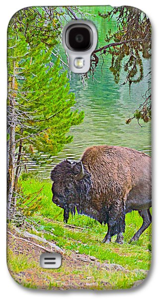 Bison Digital Galaxy S4 Cases - Bison Getting out of the Yellowstone River in Yellowstone National Park-Wyoming Galaxy S4 Case by Ruth Hager