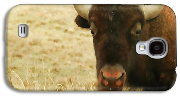 Bison Digital Galaxy S4 Cases - Bison in Custer State Park Galaxy S4 Case by Cathy Anderson