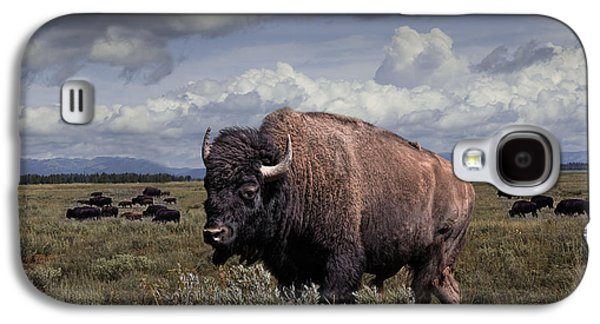 American Bison Galaxy S4 Cases - Bison in the Grand Tetons Galaxy S4 Case by Randall Nyhof