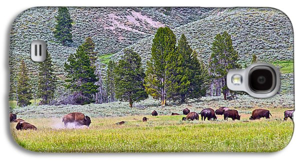 Bison Digital Art Galaxy S4 Cases - Bison Kicking Up Dust in the Meadow in Yellowstone National Park-Wyoming  Galaxy S4 Case by Ruth Hager