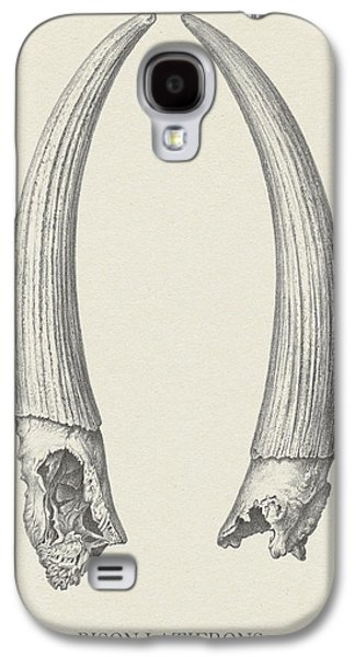 Bison Drawings Galaxy S4 Cases - Bison Latifrons Galaxy S4 Case by Pati Photography